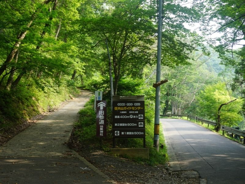 Two paths to Haguro Shrine