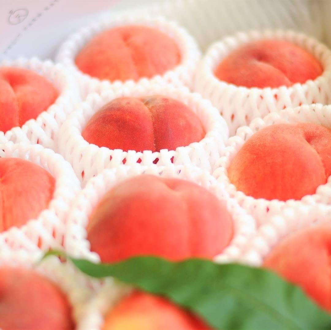 贈答用でも喜ばれる福島の桃