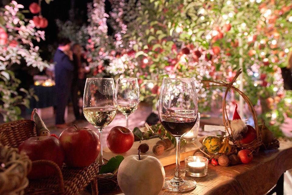 夜の果樹園