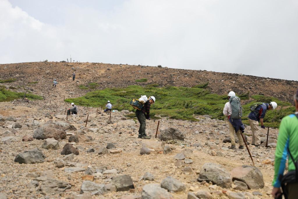 登山道沿いにロープ張りの作業
