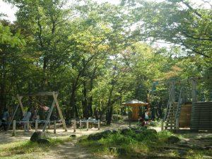 トリムの森