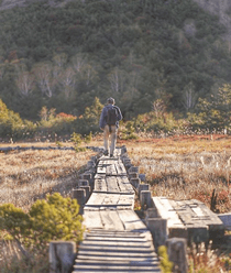 浄土平湿原の遊歩道