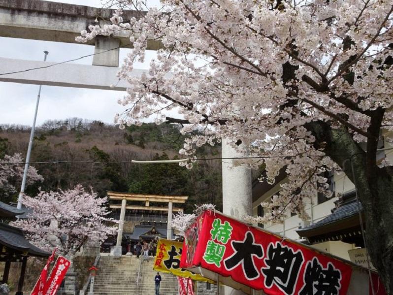 【中止】信夫山公園桜まつり