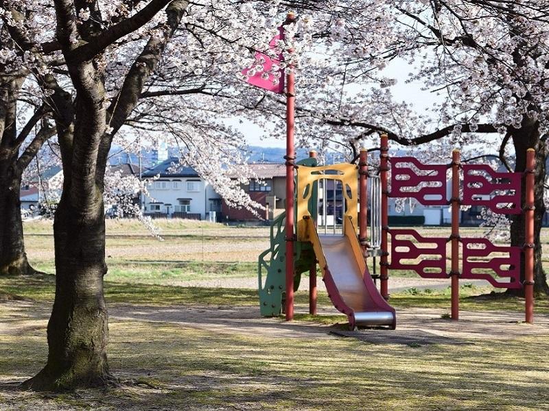 荒川桜づつみ河川公園