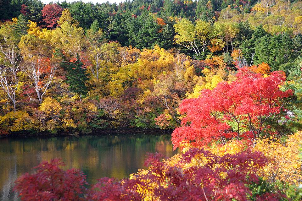 土湯の森紅葉ハイキング