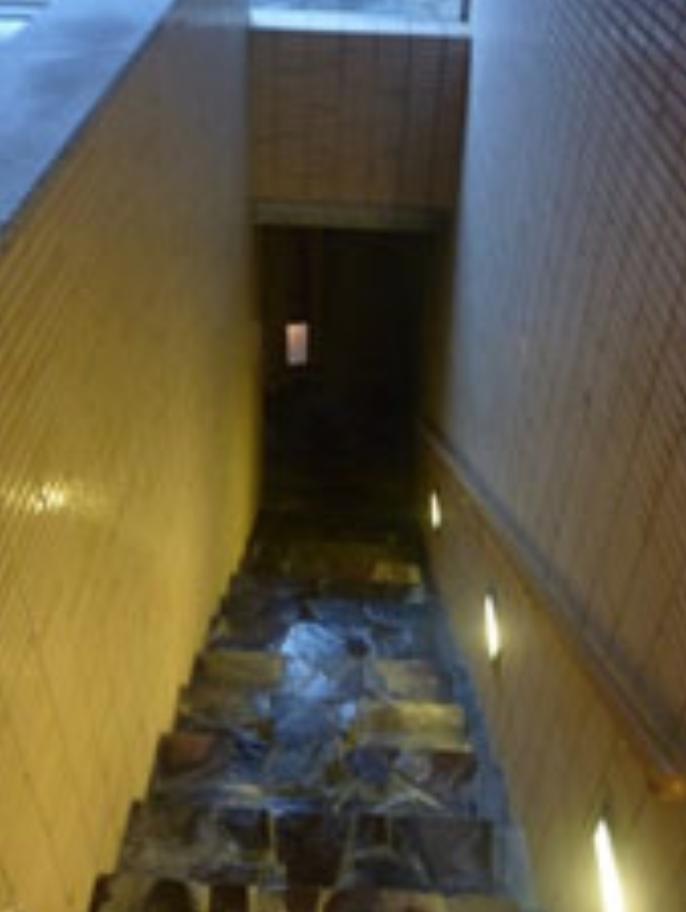 露天風呂へ繋がる階段(男湯)