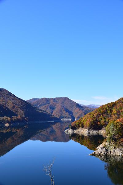 摺上川ダム「茂庭っ湖(モニワッコ)」の紅葉縦6