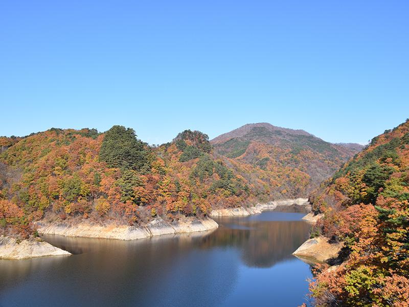摺上川ダム「茂庭っ湖(モニワッコ)」の紅葉7