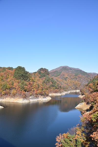 摺上川ダム「茂庭っ湖(モニワッコ)」の紅葉縦8