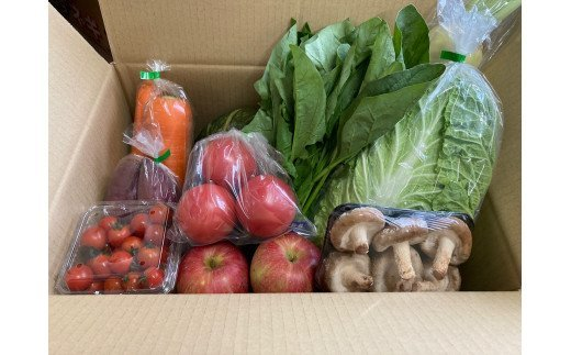ふるさと納税で人気の旬の旬のお野菜セット