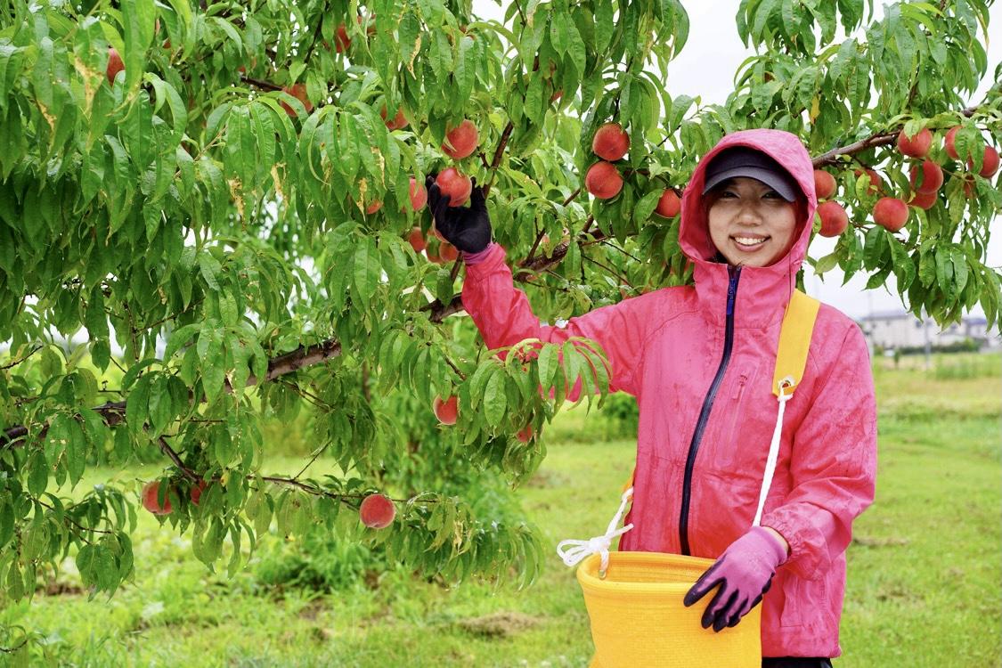 農産物から「規格」をはずしたい〜カリスマ農業女子が自分の畑を持つまで